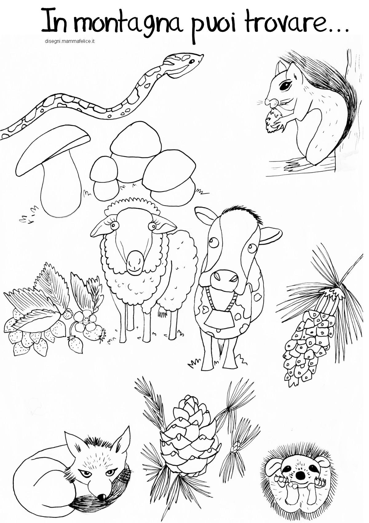 Disegno da colorare animali della montagna disegni for Disegni di paesaggi da colorare