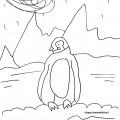 disegni-da-colorare-animali-pinguino