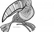 Mandala da colorare: Il tucano